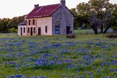Abandonded gammalt hus i Texas Wildflowers Arkivbilder