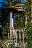 Abandonded gammalt hus med växter Royaltyfria Bilder