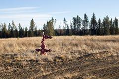 Abandonded naturgaswellhead Royaltyfri Foto