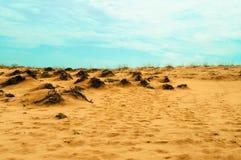 Abandone con paisaje de la arena anaranjada y del cielo azul Fotos de archivo