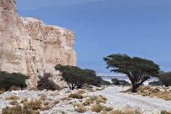 Abandone el camino al mar muerto, Israel Imágenes de archivo libres de regalías