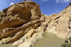 Abandone el lecho de un río seco en Negev en la primavera, Israel. Fotos de archivo libres de regalías