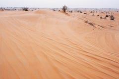 Abandone el paisaje al horizonte, a la arena y a Bush raro, neblina Fotos de archivo