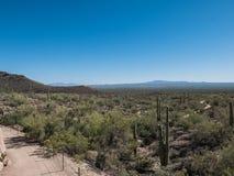 Abandone el paisaje cerca de Tucson, Arizona, en el día soleado de marzo Foto de archivo libre de regalías