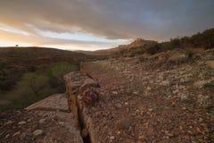 Abandone el paisaje con el cactus floreciente debajo de las nubes azotadas por el viento Fotografía de archivo libre de regalías