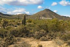 Abandone el paisaje con una flecha que señala a Phoenix Arizona Imagen de archivo