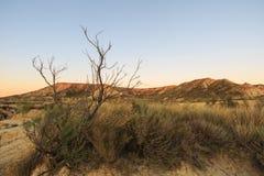 Abandone el paisaje en Bardenas Reales de Navarra, España Imágenes de archivo libres de regalías