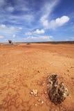 Abandone el paisaje en el llano de Hato, Curaçao Imágenes de archivo libres de regalías