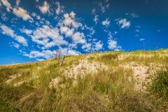 Abandone el paisaje, parque nacional de Slowinski cerca de Leba, Polonia Foto de archivo libre de regalías