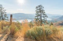 Abandone el paisaje que rodea Osoyoos visto de la montaña del anarquista Imagen de archivo