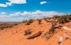 Abandone el paisaje rocoso del sudoeste de los E.E.U.U. Las piedras y la arena de Arizona Imagenes de archivo