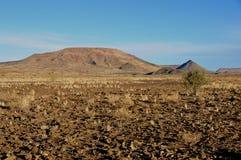 Abandone el paisaje y la vegetación en el sur de Namibia Foto de archivo libre de regalías