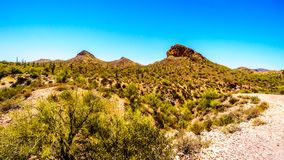 Abandone el paisaje y las montañas rugosas en el bosque del Estado de Tonto en Arizona, los E.E.U.U. Fotografía de archivo libre de regalías