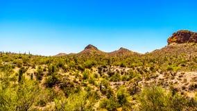 Abandone el paisaje y las montañas rugosas en el bosque del Estado de Tonto en Arizona, los E.E.U.U. Imagen de archivo