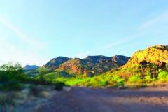 Abandone el rastro en el desierto de Sonoran en Arizona los E.E.U.U. fotografía de archivo libre de regalías