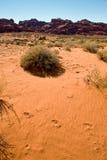 Abandone la arena con huellas Fotografía de archivo libre de regalías
