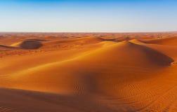 Abandone la arena y las dunas con el cielo azul claro foto de archivo libre de regalías