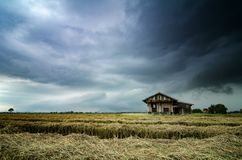 Abandone la casa de madera rodeada por el campo de arroz con el fondo dramático de la lluvia de las nubes Fotografía de archivo