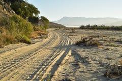 Abandone la mañana Baja, México del camino de la playa del paisaje Imagenes de archivo