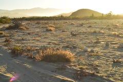 Abandone la mañana Baja, México del camino de la playa del paisaje Fotografía de archivo libre de regalías