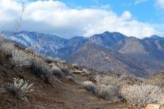 Abandone la pista de senderismo con las montañas coronadas de nieve en la distancia Fotos de archivo