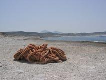 Abandone la playa con en las cuerdas del rosa del primero plano en la isla de Milos en Grecia Imágenes de archivo libres de regalías