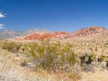 Abandone la vegetación y las colinas rayadas en distancia debajo de azul claro Foto de archivo libre de regalías