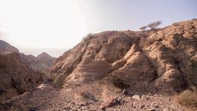 Abandone las montañas cerca del mar con los pequeños árboles en el top Imagen de archivo