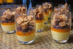Abandone las tortas dulces con la frambuesa y el chocolate del yogurt congelado Imagen de archivo