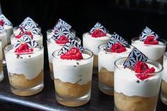 Abandone las tortas dulces con la frambuesa y el chocolate del yogurt congelado Foto de archivo libre de regalías