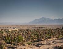 Abandone a opinião da paisagem em oásis Irã do sul do garmeh Fotografia de Stock