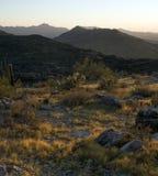 Abandone a paisagem Fotografia de Stock Royalty Free