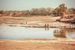 Abandone a paisagem com rio pequeno e a mulher obteve uma água para a casa Área rural natural da Índia fotos de stock