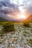 Abandone, un arbusto, puesta del sol, montañas Imagenes de archivo