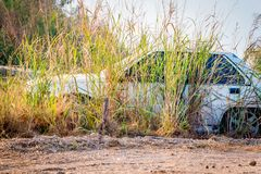Abandone vände gamla bilar in i haverier Arkivfoton