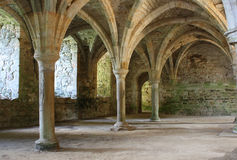 Abandoned Abbey1 royalty free stock photos
