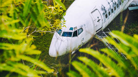 Abandoned aircraft between leaves, Bali, Indonesia Royalty Free Stock Photos
