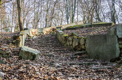 Abandoned ancient stairs covered with leaves in Striysky park in Lviv, Ukraine. Abandoned ancient stairs covered with leaves in Striysky park in Lviv Stock Image