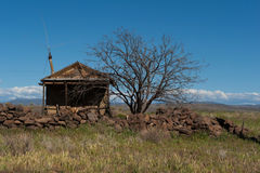 Abandoned arizona house. A cabin in the southwest desert has a stone wall and tree in front of it, with a blue sky behind and mountains in the distance Royalty Free Stock Images