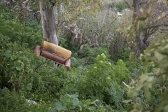 Abandoned armchair in the forest. Old armchair abandoned in the forest under a eucalyptus stock image