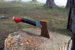 Abandoned axe in tree trunk stock photography