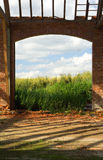 Abandoned barn. View from an abandoned barn onto summer sky above wheat field royalty free stock photos