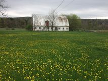 Old barn in upstate New York stock photography