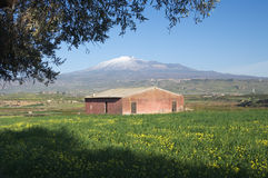 Abandoned barn and Etna Stock Photography