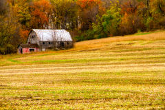 Abandoned Barn in the Fall Royalty Free Stock Images