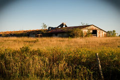 Abandoned barn in field. Scenic view of abandoned barn in field Royalty Free Stock Images