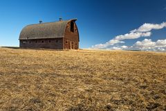 Abandoned barn in harvested wheat  field Stock Photography