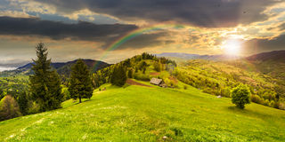 Abandoned barn in mountains at sunset. Abandoned farm field with ruined barn in mountains near coniferous forest in sunset light with rainbow Royalty Free Stock Photos