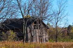 Abandoned Barn in Trees Stock Photography