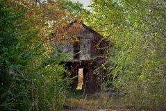 Abandoned barn. In the woods Royalty Free Stock Image
